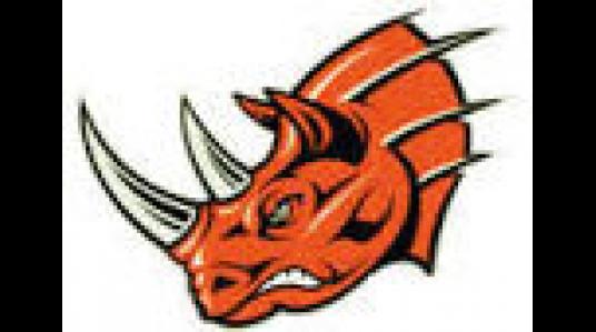logo_rhinos.png