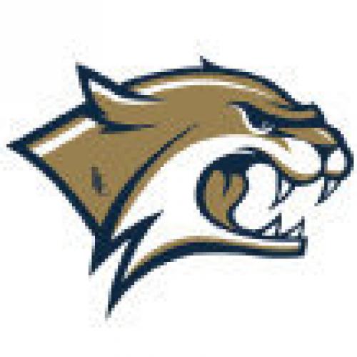 logo_wildcats.png